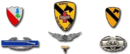 15th Medical Battalion unit crests and patches.