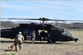 Military working dogs work with Medevac.